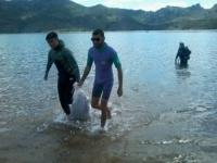 Аквалангисты и бойцы трудового отряда «Жасыл Ел» очистили озеро Жасыбай от мусора