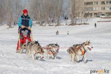 В Павлодаре в дни зимних каникул всеми формами занятости охватят 40 тысяч школьников