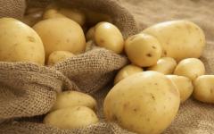 Павлодарские картофелеводы теряют покупателей из-за российских конкурентов