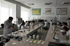 Одаренные юные химики собрались в Павлодаре