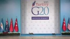 Три кошки пришли на саммит G20