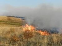 Около 180 га степи спалил пожар в сельской зоне Экибастуза