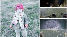 Признаков насильственной смерти на теле Эллины Кульдиной не обнаружено - ДВД