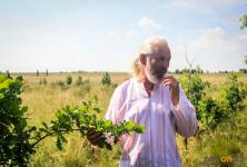 К 300-летнему юбилею Павлодара объявлена акция «Подари дерево городу»