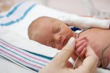 Павлодарские врачи будут учиться у своих новосибирских коллег выхаживать маловесных детей