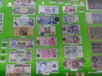 Выставку денег стран мира устроили активисты Павлодарского Дома географии