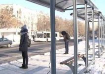 Трое павлодарцев на остановке заставили девушку-подростка снять куртку и показать содержимое сумки