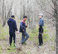 В Павлодаре полиция ищет троих парней, которые, возможно, нанесли ущерб гослесфонду почти на 160 тысяч тенге