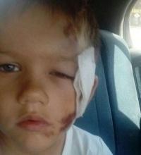 Швырнувшему ребёнка на бетон мужчине дали условный срок в суде Павлодара