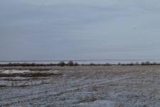 В акимате Павлодара напоминают: рыбу в накопителе Былкылдак ловить нельзя