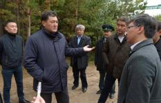 Аким Павлодарской области предложил предпринимателям открывать частные лесопитомники