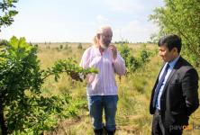 Благодаря помощи Евроазиатской энергетической корпорации павлодарский частный лесопитомник получил новое развитие