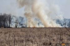 В Павлодарской области в результате пожаров сгорело свыше двух тысяч гектаров сухой травы