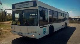 В этноаул села Кенжеколь на время фестиваля запустят новый автобусный маршрут