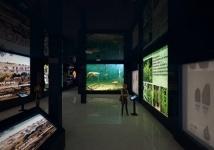 Современный музей истории Павлодарской области появится в августе 2019 года