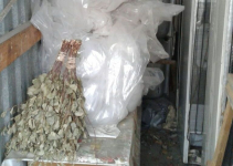 В павлодарской школе «Стикс» обнаружили баню на дровах