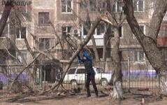 Жители дома по Чокина, 95 в Павлодаре боятся гулять с детьми во дворе