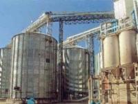 Павлодарские хлеборобы не могут сдать зерно на элеваторы