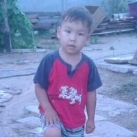 К поискам пропавшего в поселке Аксу четырехлетнего Тамерлана подключились волонтеры