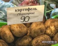 На павлодарских прилавках появилась первая партия черноярского картофеля