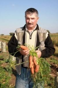 ФХ «Сергей»