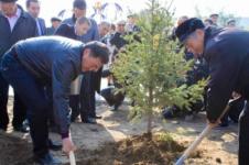 Сегодня аким Павлодара высаживал елочки в парке ветеранов (фото)