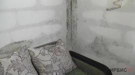 Жить невозможно: многодетные матери из Аксу жалуются на качество новостроек
