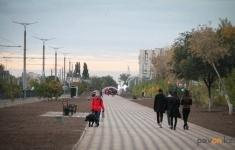 В Павлодаре ищут новые места под площадки для выгула собак