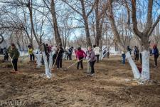 Почти шесть миллиардов тенге потратят в Павлодарской области на благоустройство, озеленение и санитарное содержание населенных пунктов