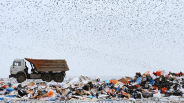Четыре новых мусорных полигона могут появиться в Павлодарской области в 2023 году