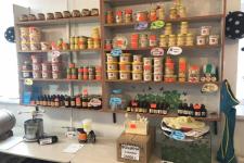 В Павлодаре открыт первый в Казахстане музей пчеловодства