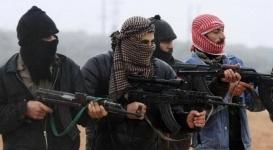 Афганистан призвал страны СНГ объединиться для борьбы с угрозой ИГИЛ