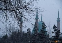 Легкий мороз и метель прогнозируют синоптики