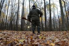 С 1 ноября открывается охота на зайцев, лис и корсаков