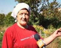 Павлодарские дачники жалуются на участившиеся случаи воровства