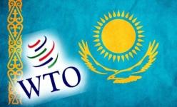 Казахстанские предприятия могут не выдержать конкуренцию в условиях ВТО