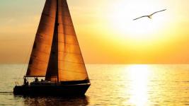Нешуточный скандал разгорелся вокруг деятельности павлодарского яхт-клуба
