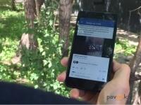 Жительницу Павлодара задержали за оскорбление в социальных сетях стражей порядка