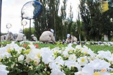 """Бойцы """"Жасыл ел"""" ухаживают за цветами в Павлодаре"""