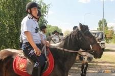 В Павлодаре создадут взвод полицейской кавалерии