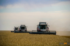 Опытные фермеры Успенского района, несмотря на засуху, смогли получить неплохой урожай зерновых
