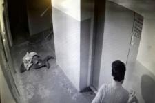 В Павлодаре задержали подозреваемого в зверском убийстве