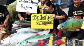 В Таиланде из-за проблем с переводом россиянин остался без уха