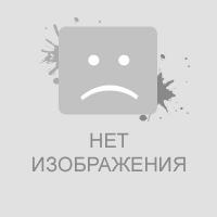 Краснокнижный журавль-красавка прилетел в Лебяжинский район