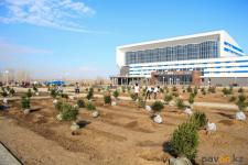 Павлодарский филиал ForteBank в рамках компенсации городу высадит 500 саженцев