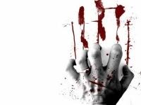 Дело об убийстве семьи в селе Павлодарском закрыли