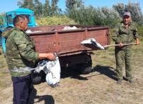 Лесники Павлодарской области ежедневно собирают мешки мусора за отдыхающими