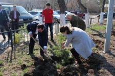 В Павлодаре стартовала акция «Посади свое дерево»