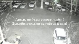В Павлодаре видеокамеры зафиксировали избиение мужчины