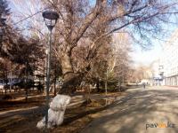 Аким области недоволен проводимой работой по освещению Павлодара
